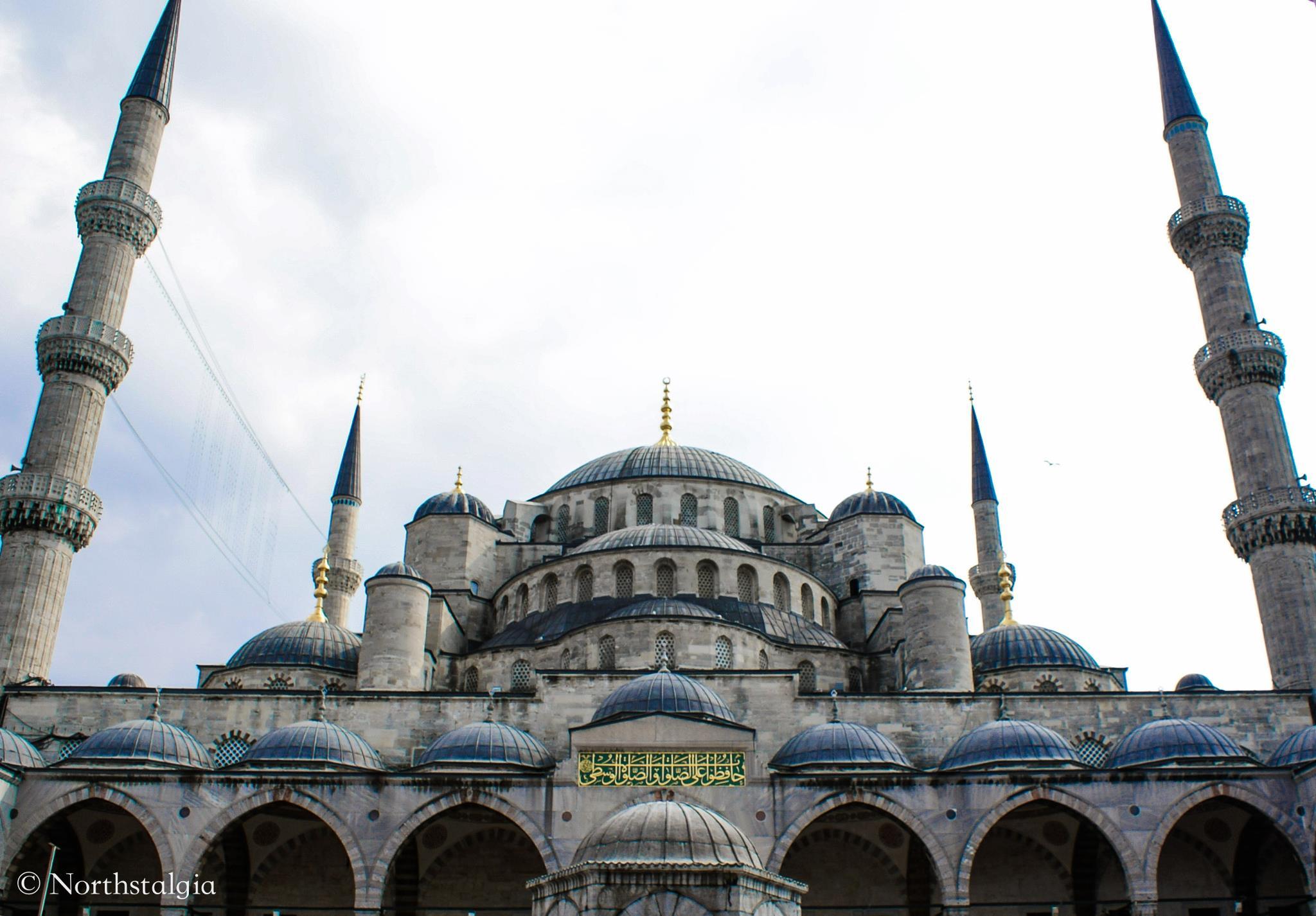 ежика стамбул с голубой мечетью картинки ариэль очень